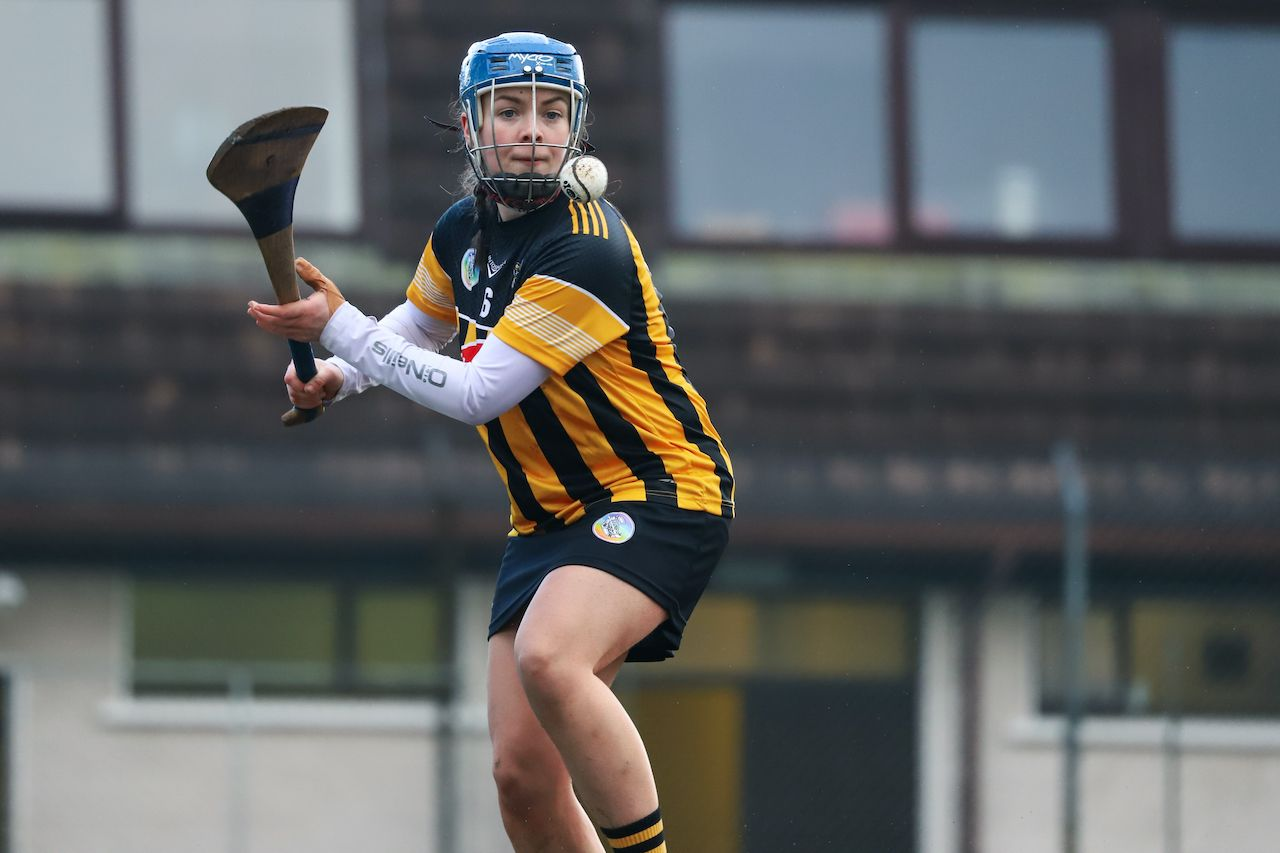 Camogie Leagues Division 1