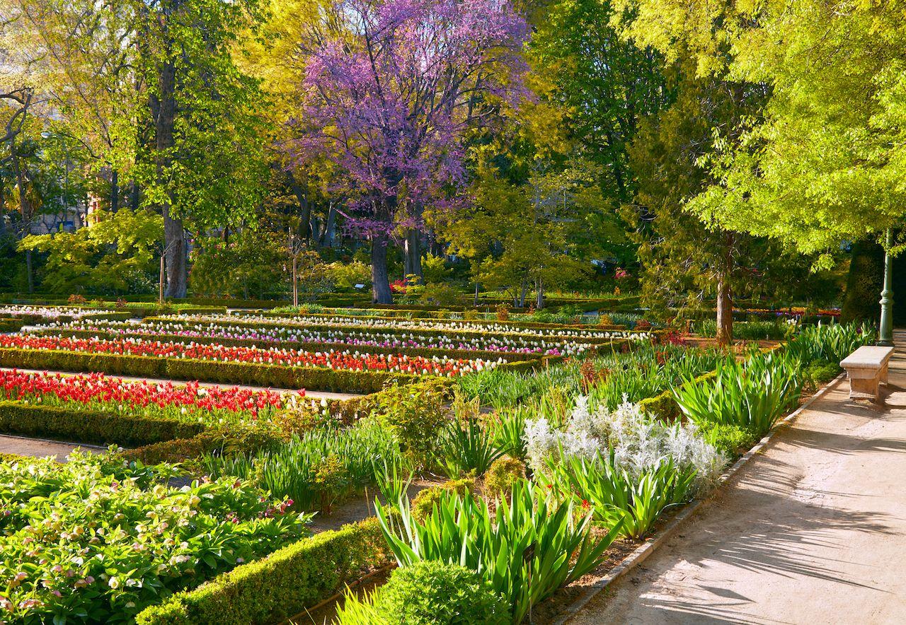 Madrid Botanic Garden