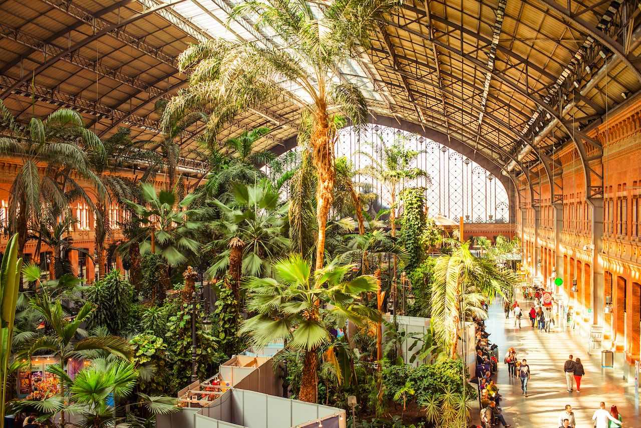 Tropical green house, location in 19th century Atocha Railway Station