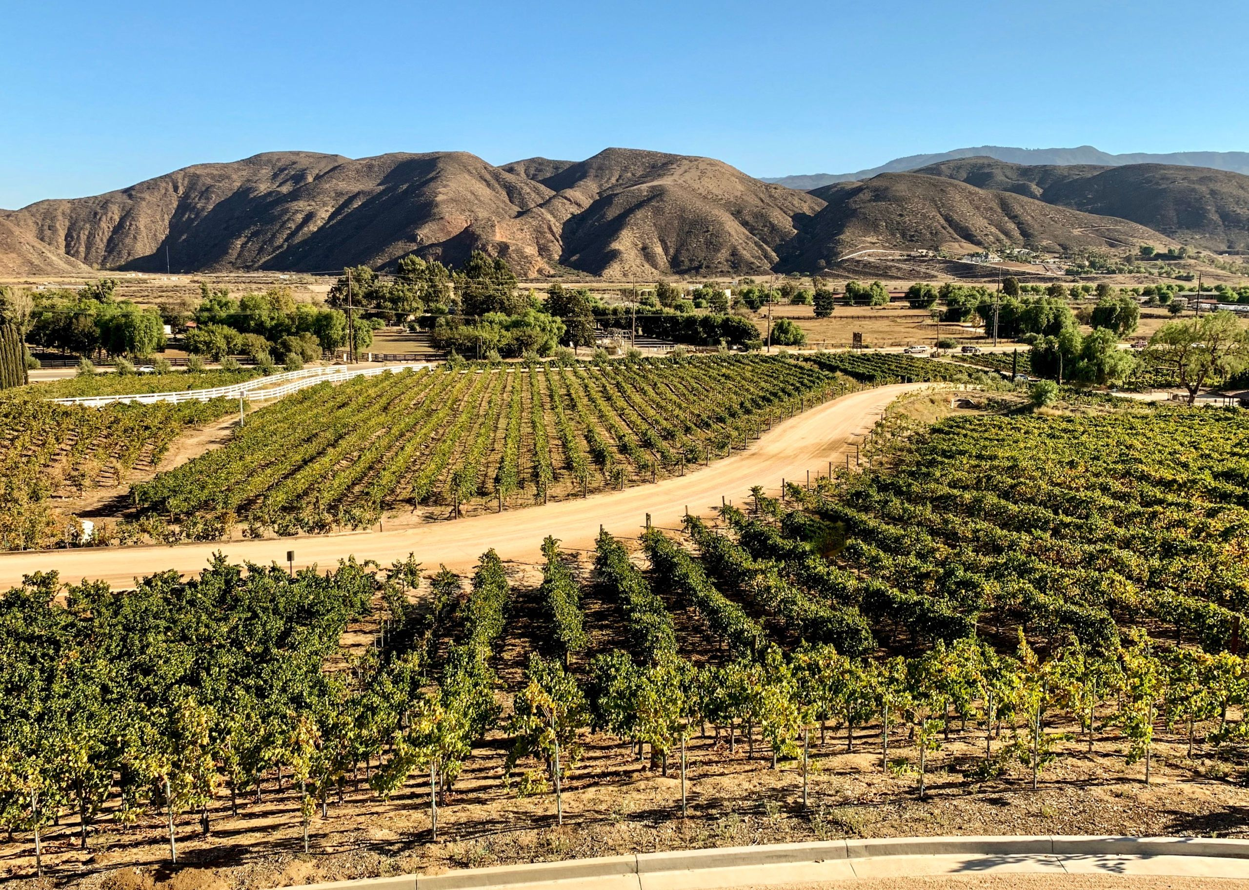 California's Temecula Valley wine
