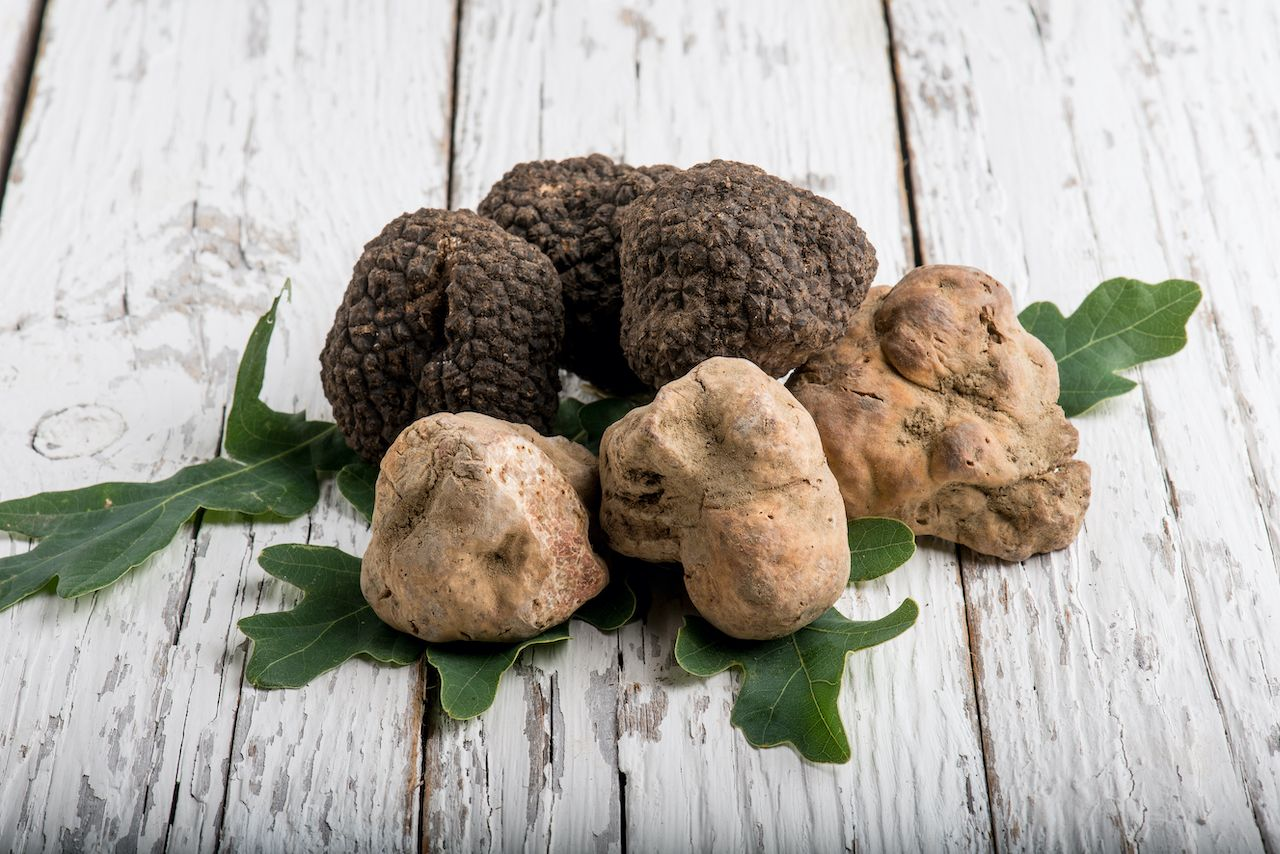 The difference between truffles