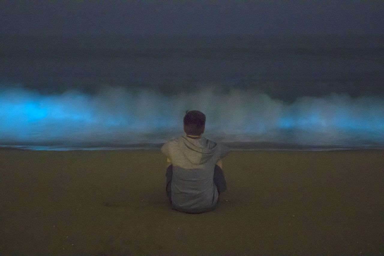 Bioluminescence in Newport Beach 1