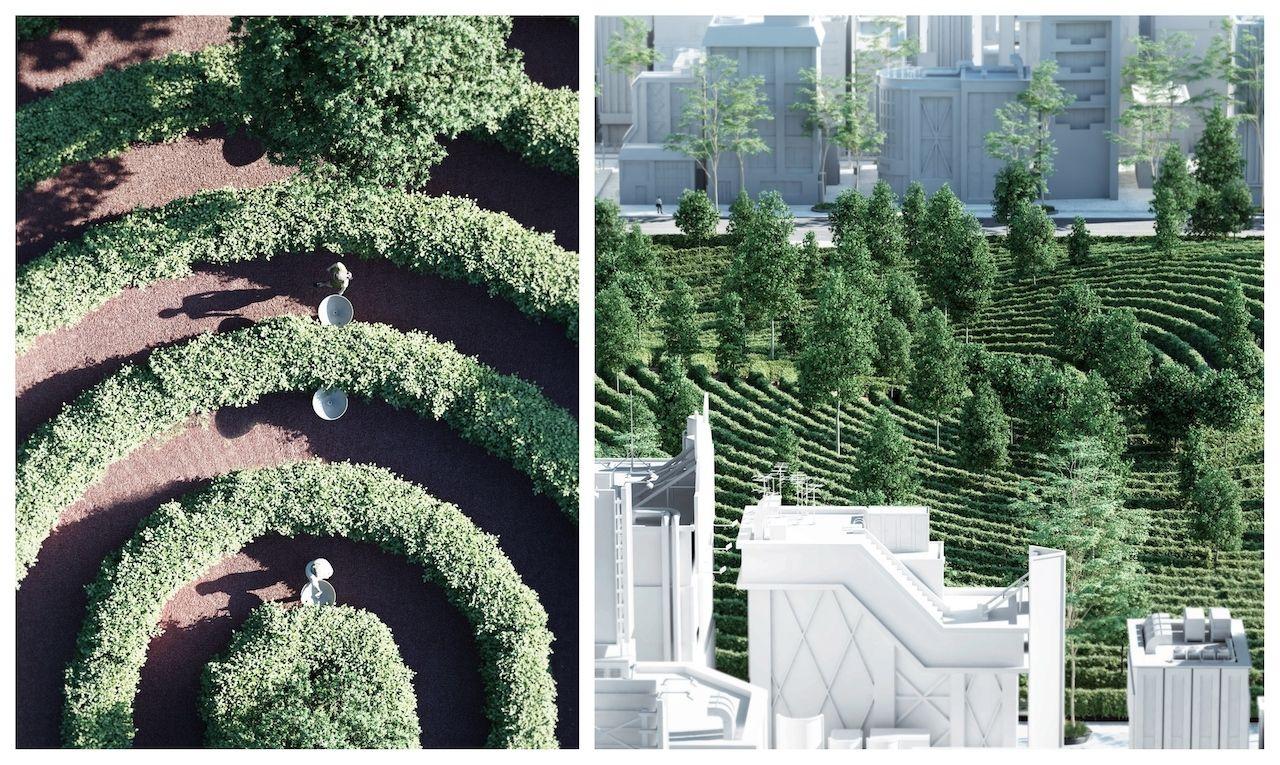 Parc de la distance collage 2