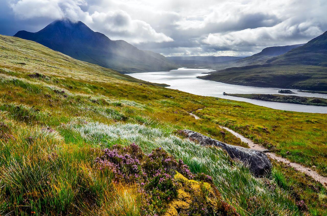 Positive environmental news