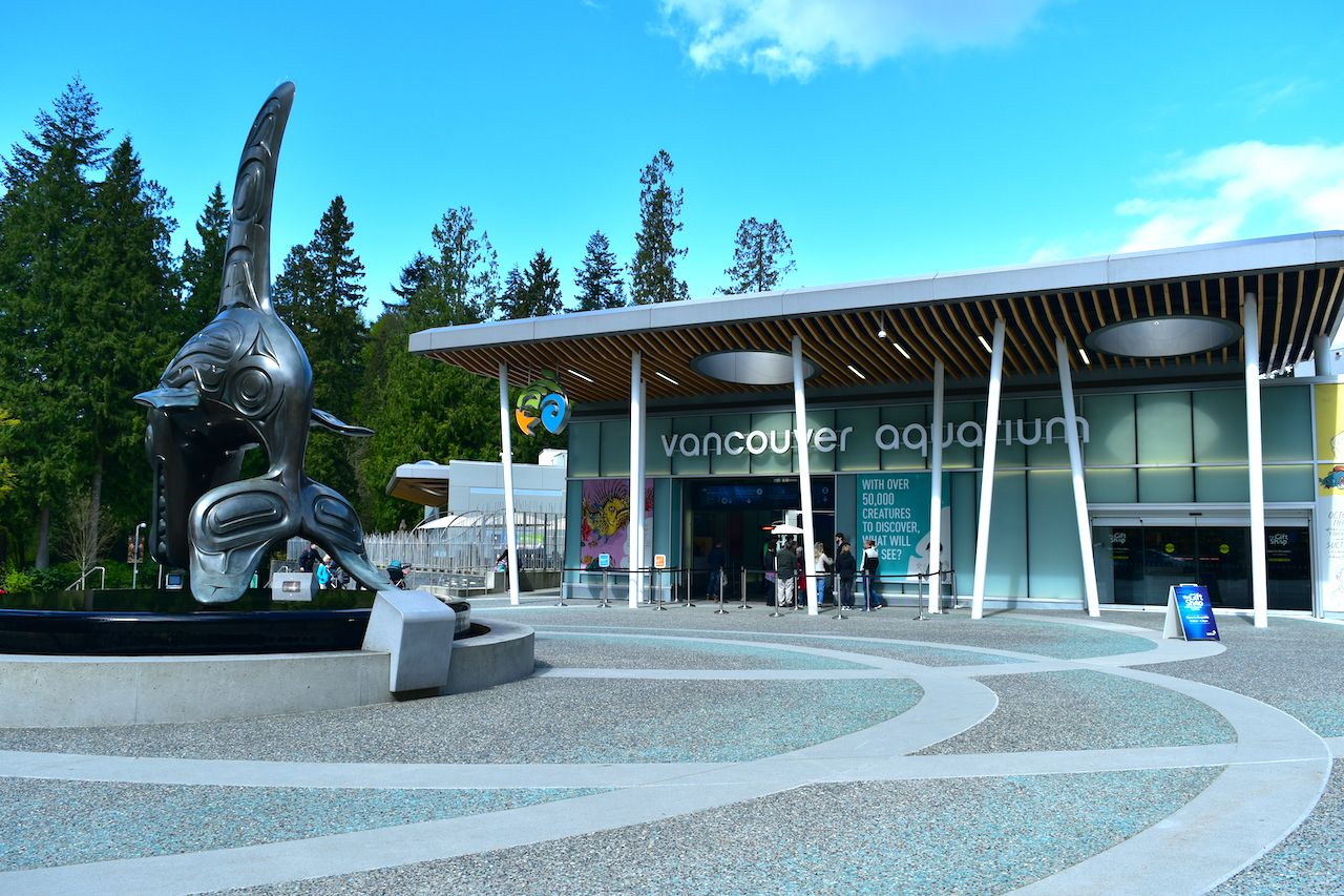 Vancouver Aquarium may close forever