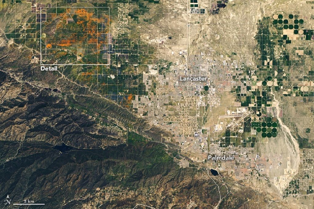 California satellite view poppies NASA_2
