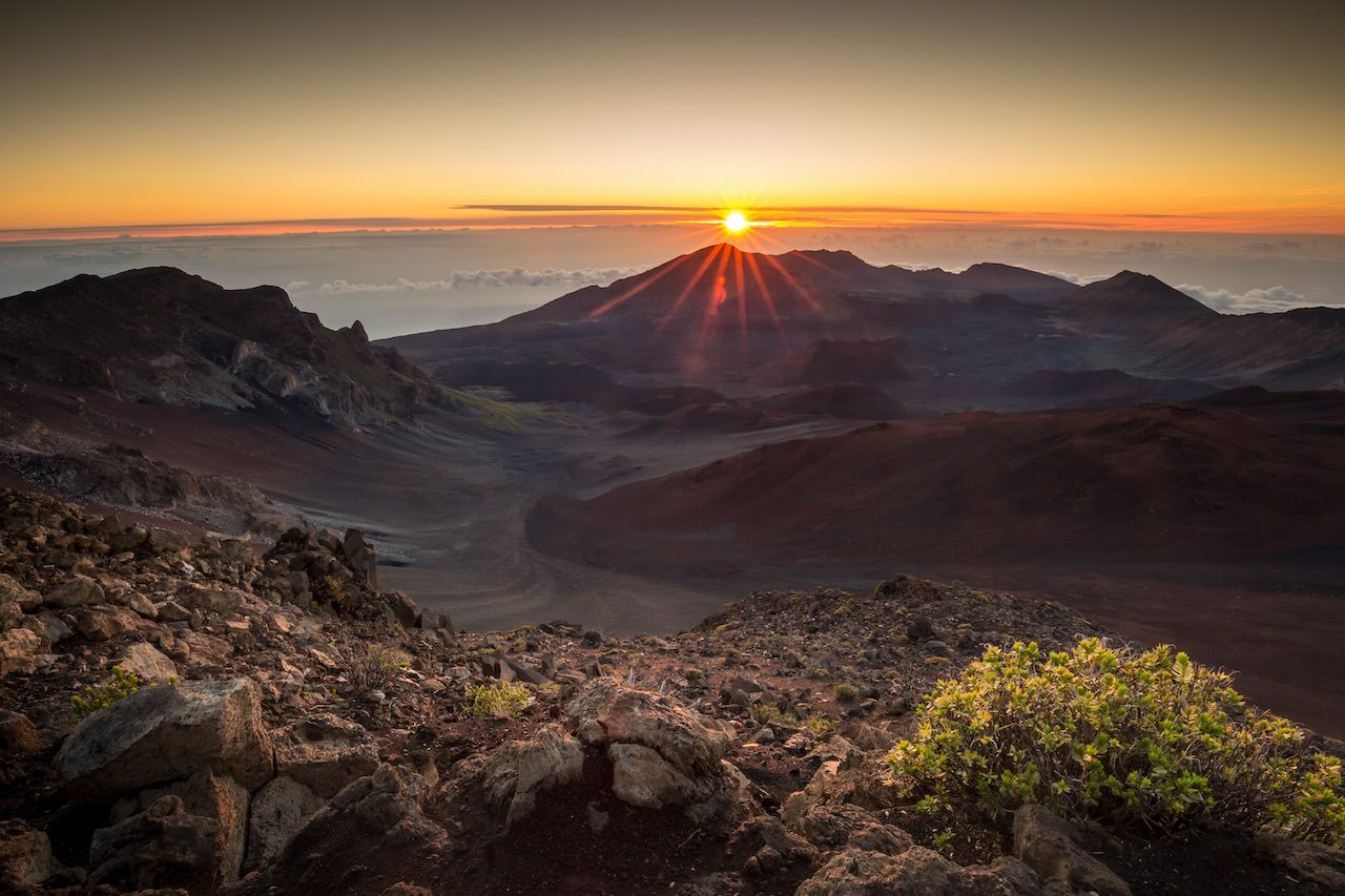 Voluntourism in paradise: 5 incredible opportunities to give back on Maui