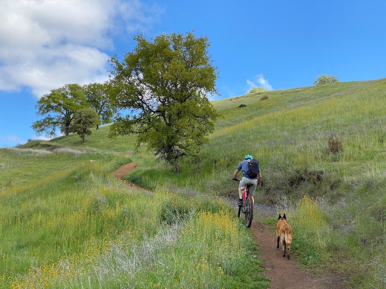 Mountain bike trails by Sacramento