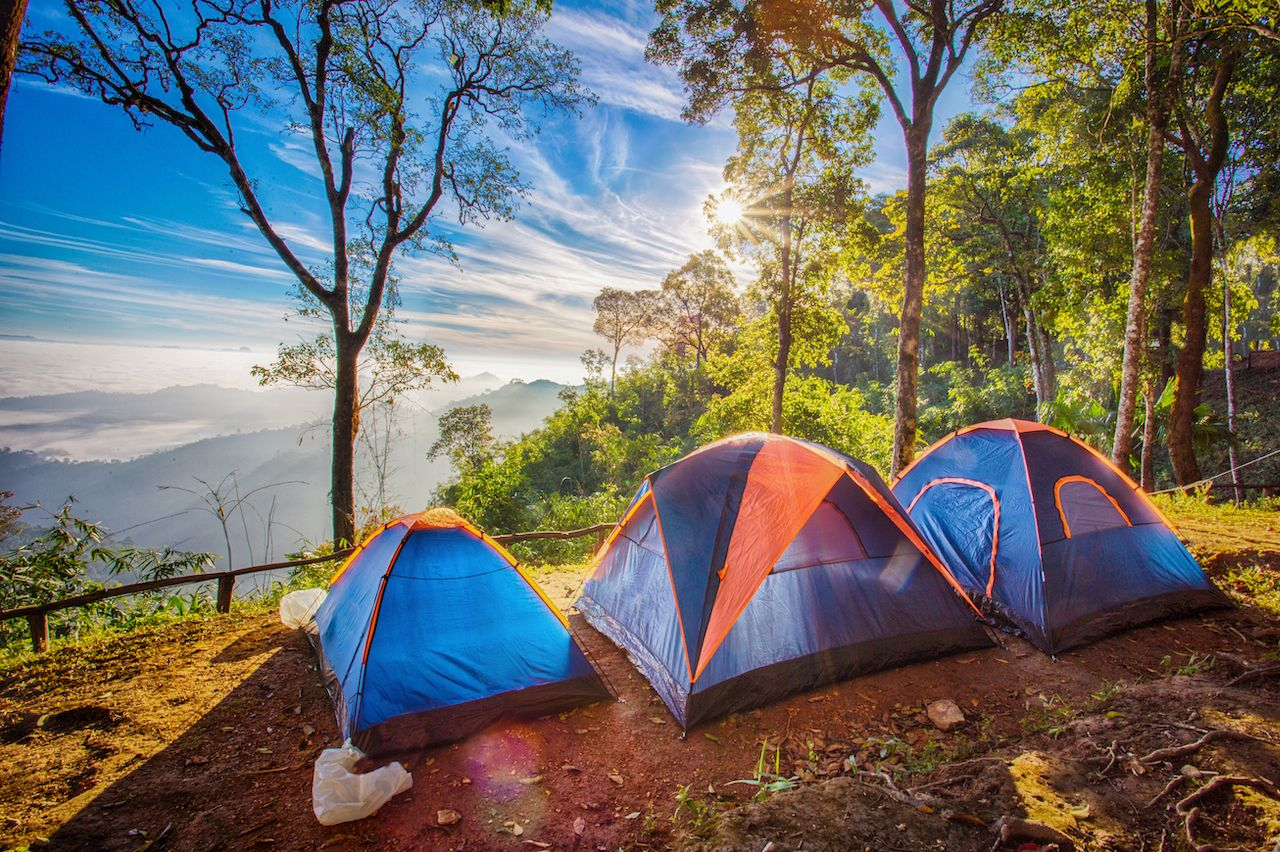 Camping popularity in 2020
