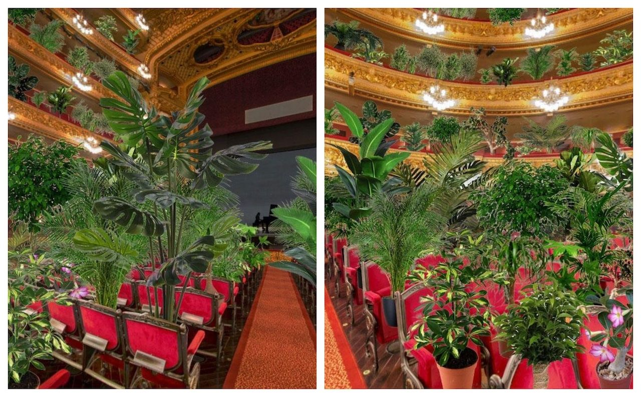 Concert for plants at Barcelona opera house