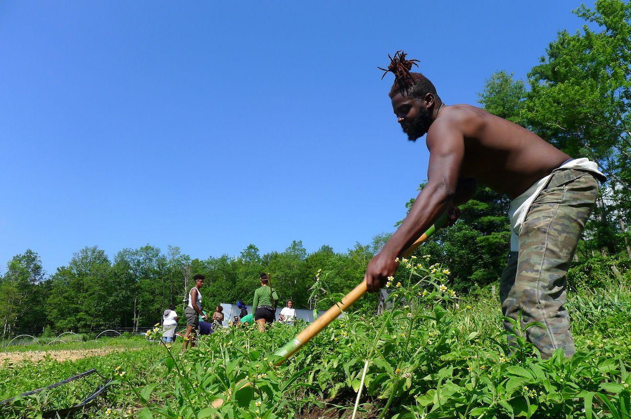 farming-at-soul-fire-farm