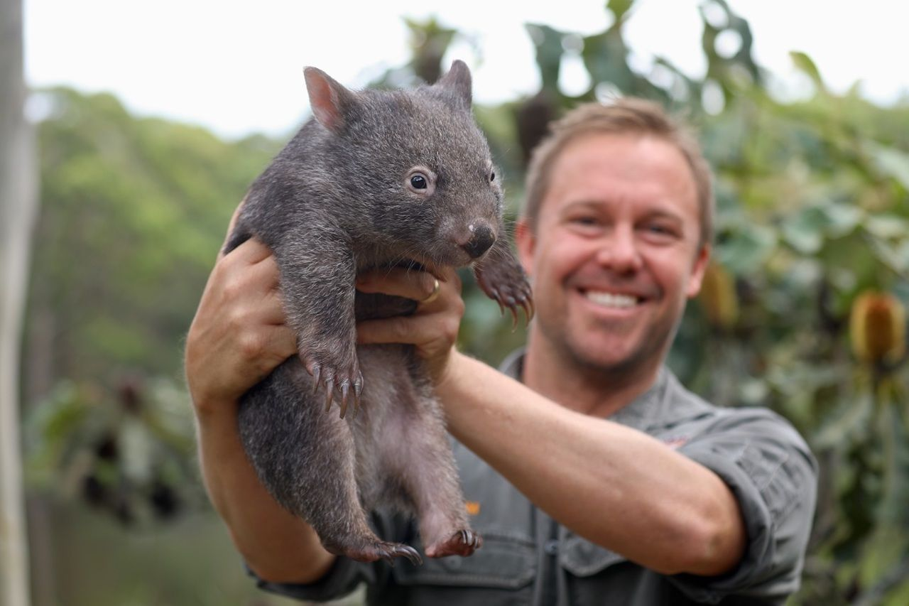 koala_wombat_friendship_1