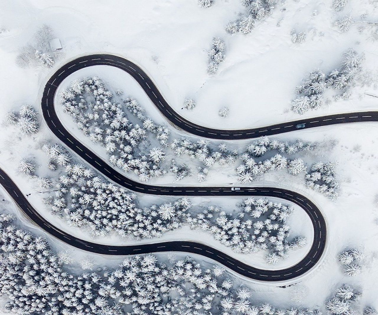road_in_winter