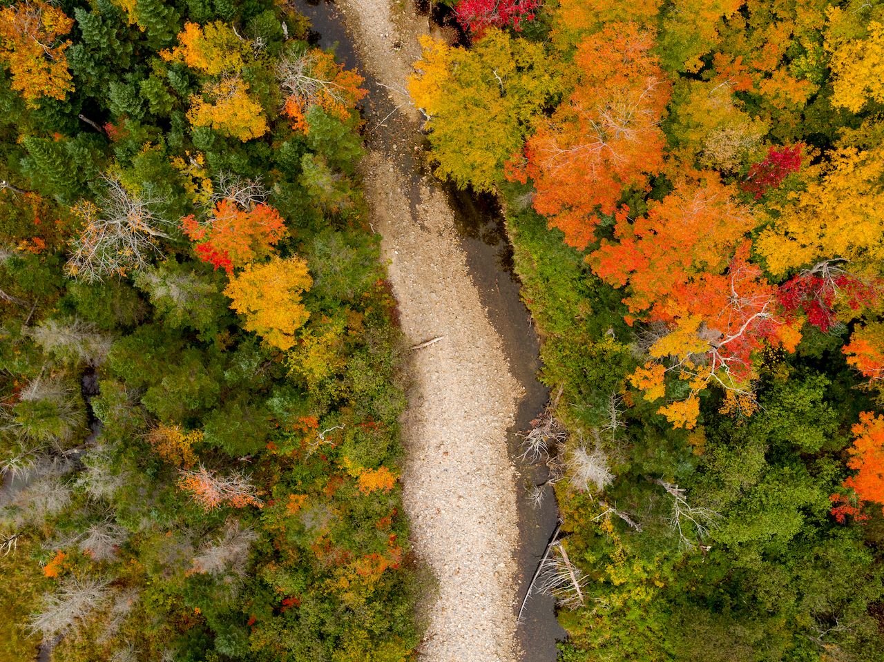 An aerial view of fall foliage in New Hampshire