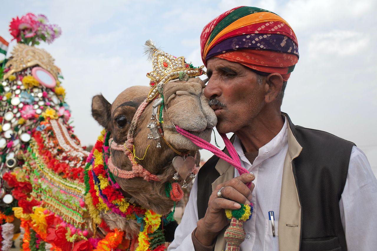 Camel festival 3