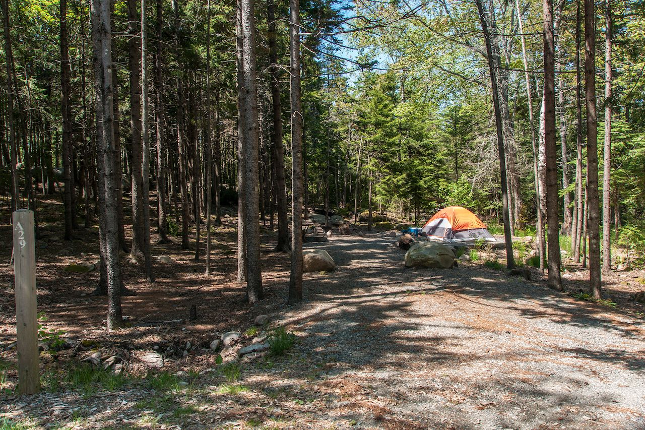 Blackwoods Campground in Acadia National Park