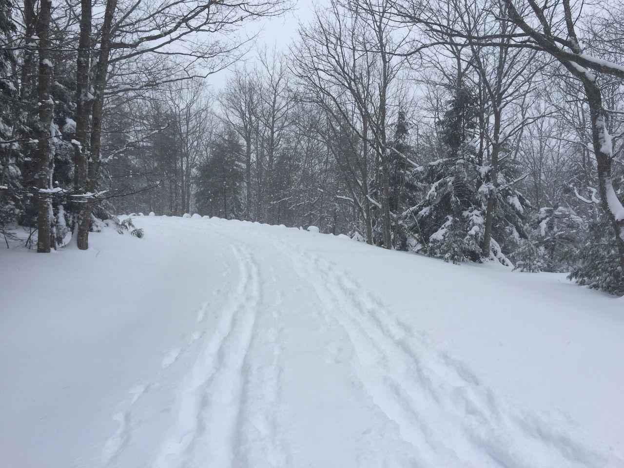winter path skiing maine