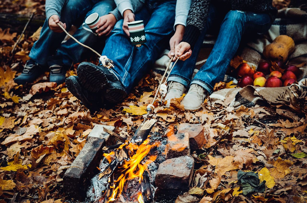 Family roasting marshmallows over a fire