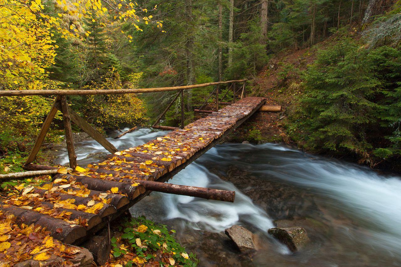 fall road trip4