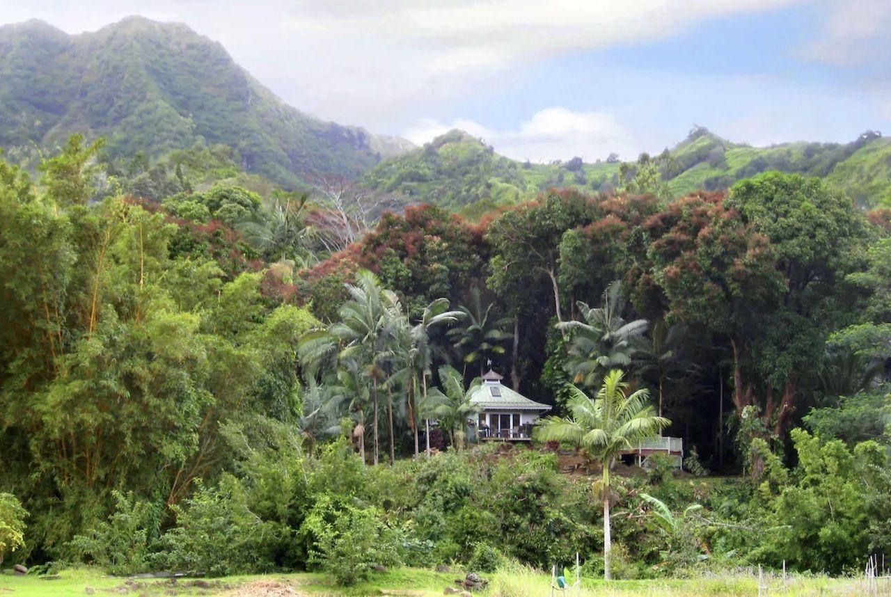 hawaii8