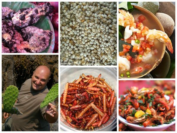 alimentos prehispánicos