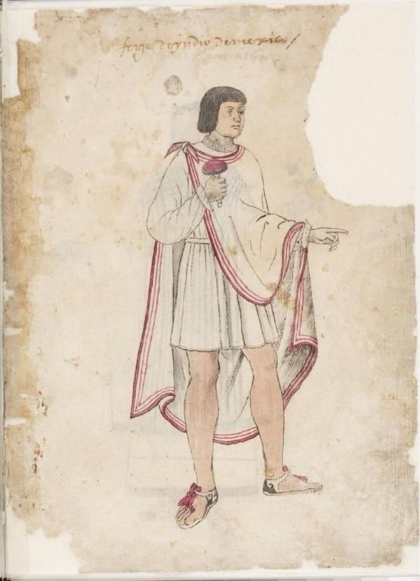 Martín Ocelotl