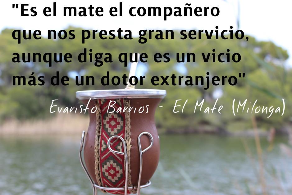 Las Frases Que Mejor Homenajean Al Mate Fiel Compañero De