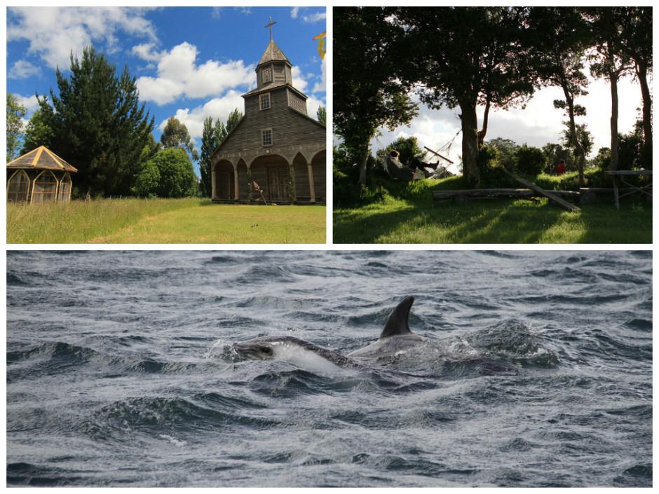 Arriba: Iglesia Ichuac y parada en Isla Lemuy. Abajo: Delfín Austral, Queilén. Crédito: