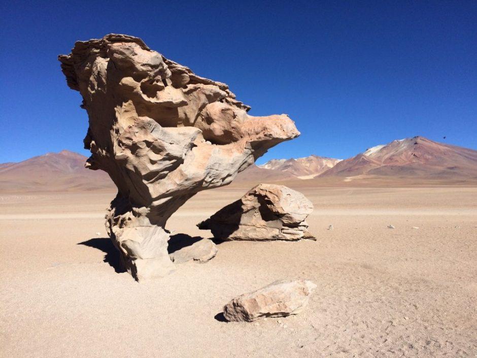 Árbol de piedra, por Fran Norero