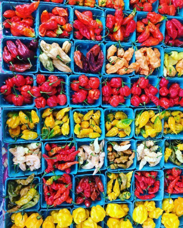 propiedades curativas del chile
