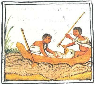 aves mágicas de Tenochtitlan