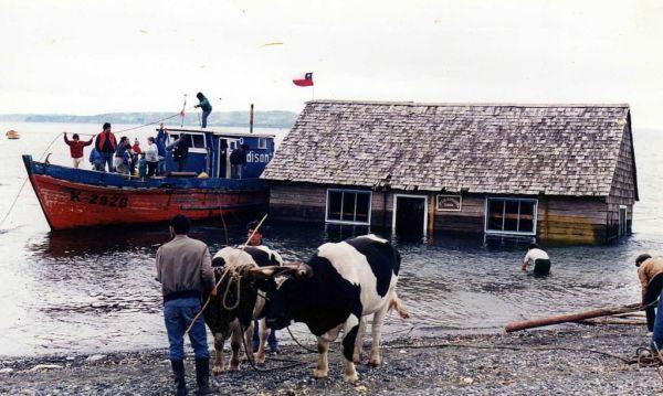 costumbres chilenas de origen Mapuche
