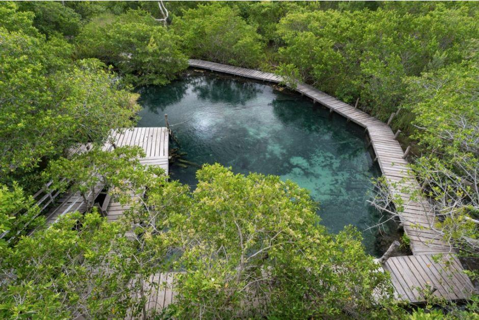 Holbox Ojo de Agua Yalahau