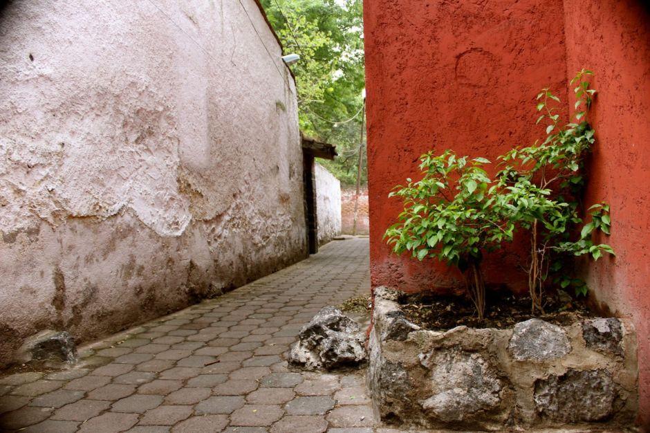 leyendas de Coyoacán