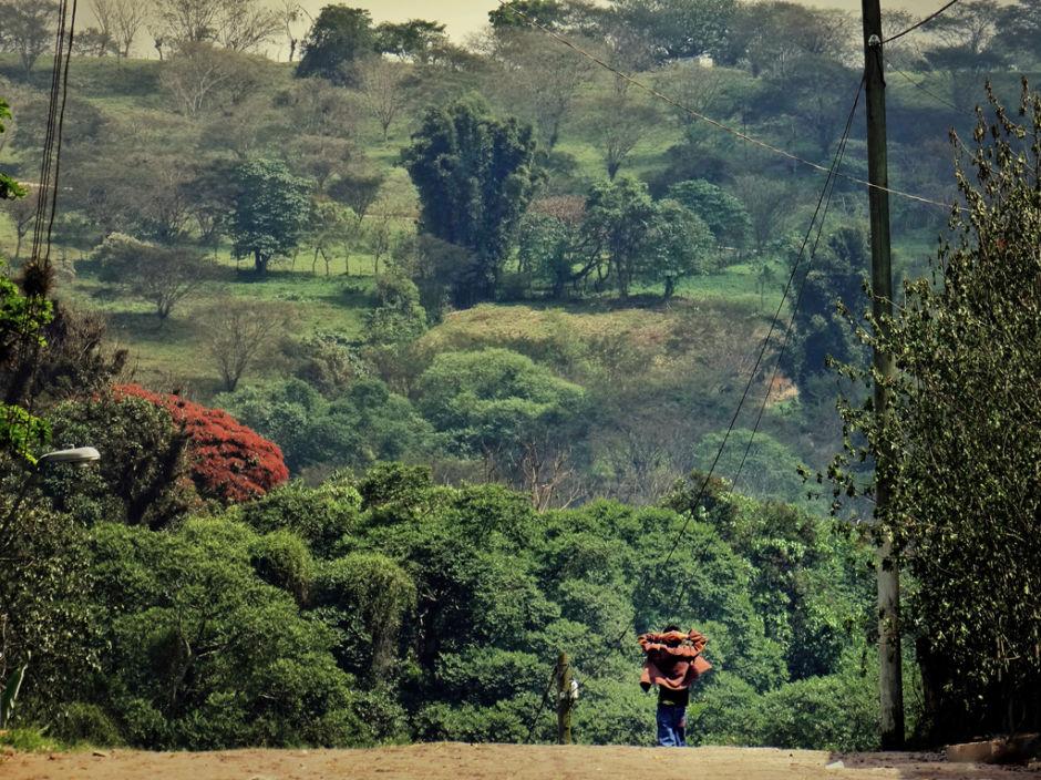 Xico, pueblo mágico cerca de Coatepec