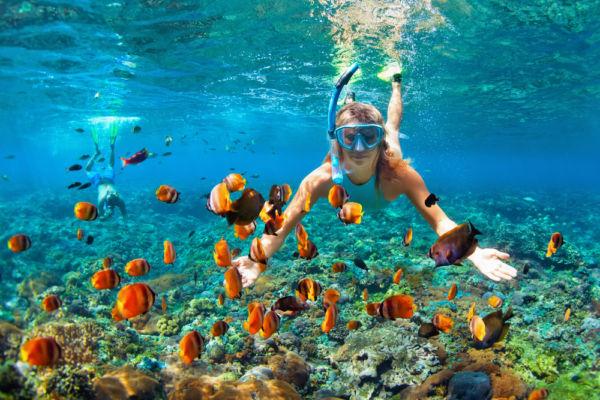 Qué hacer en Puerto Vallarta, Jalisco, con sol y con lluvia snorkel
