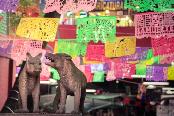 historia de Coyoacán centro de Coyoacán