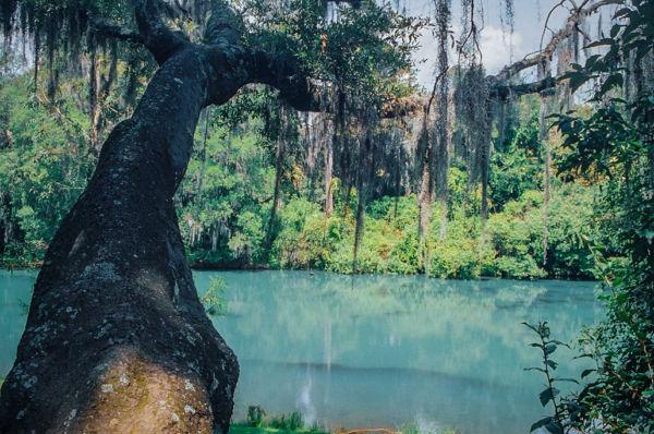 Parque Ecoturístico San Miguel Regla