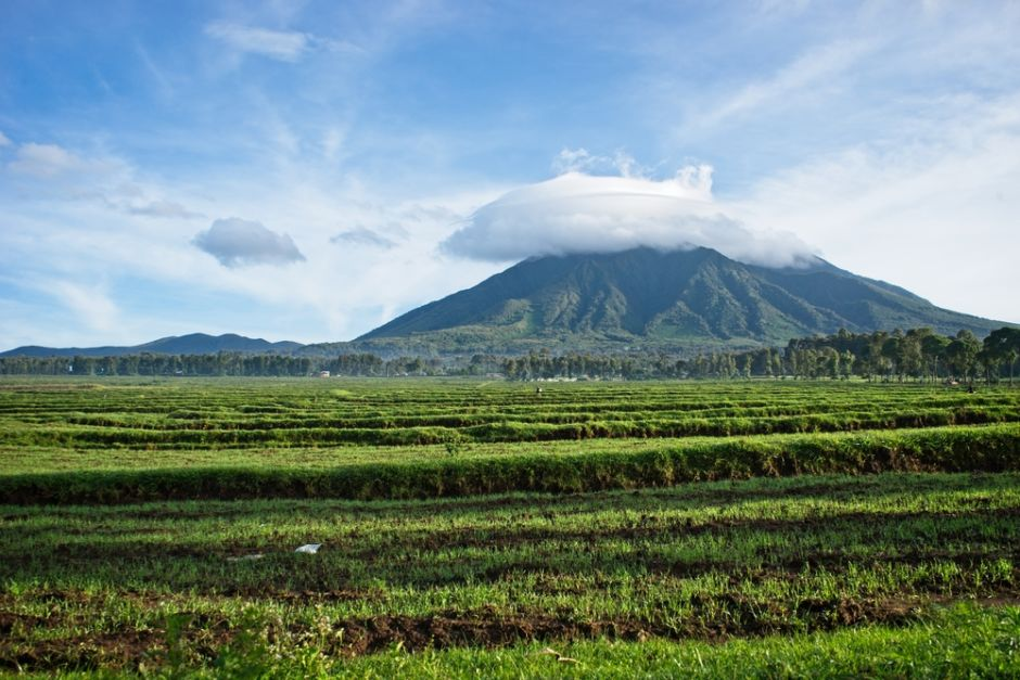 Parque Nacional de los Volcanes viajar a Ruanda