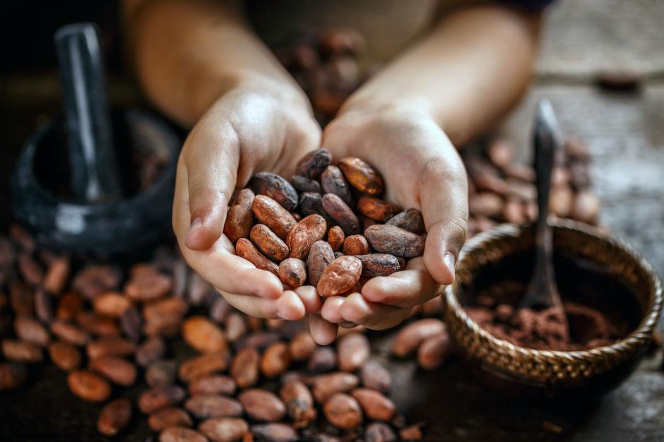ruta del chocolate