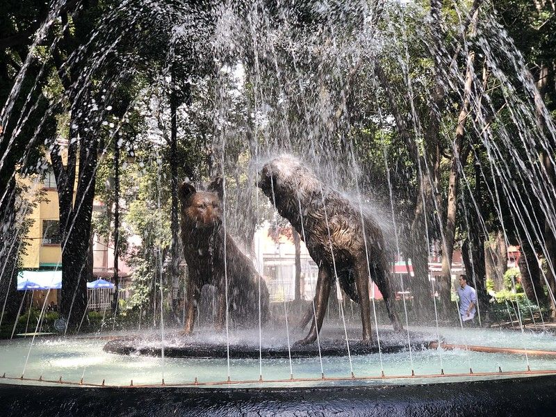 fuente de los coyotes espacios verdes de Coyoacán