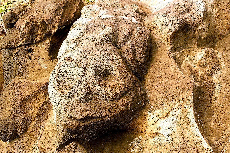 Pétroglyphes Rapa Nui