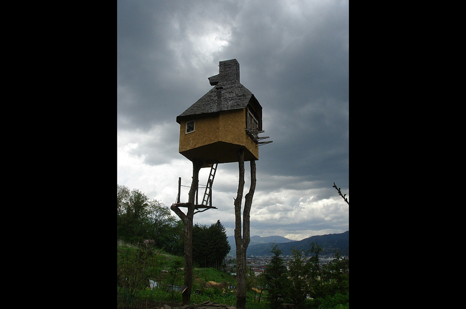 a tiny house built on poles and ladders