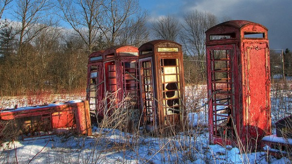 abandoned phone booths in the wild with grass growing around