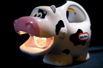 burping cow model