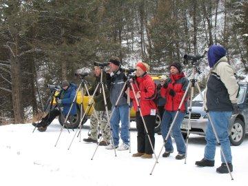 Wolf watchers in Yellowstone