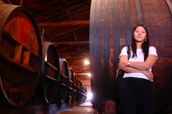 In the winery, Argentina