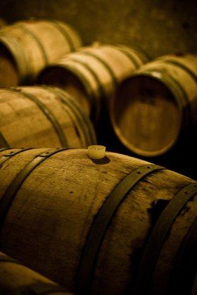 Wine barrels, Argentina