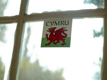 Cymru sticker, Argentina