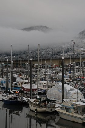 Fishing boats, Juneau